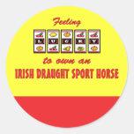 Afortunado a propio un caballo irlandés del etiqueta redonda
