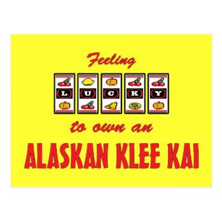 Afortunado a propio un diseño de Alaska del perro Tarjeta Postal