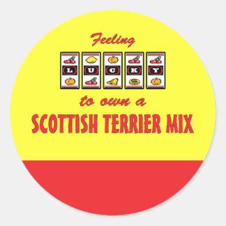 Afortunado a propio un diseño escocés del perro de pegatinas redondas