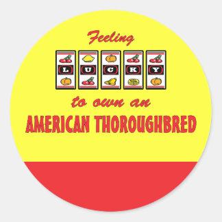 Afortunado a propio un diseño excelente americano pegatina redonda