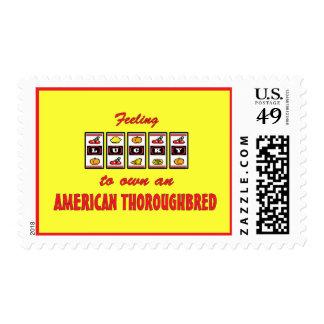 Afortunado a propio un diseño excelente americano sello