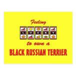 Afortunado a propio un diseño negro de la diversió tarjeta postal