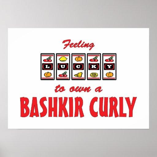 Afortunado a propio un diseño rizado bashkir del c posters