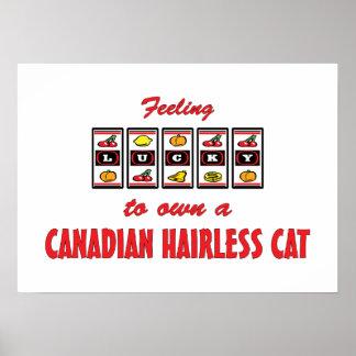 Afortunado a propio un gato sin pelo canadiense De Poster