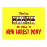 Afortunado a propio un nuevo diseño de la diversió tarjeta postal