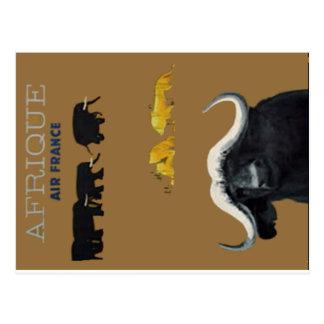 Africa3 Postcard