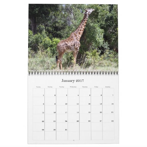 africa 2013 calendar