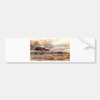 africa-944-land-wild-nature bumper sticker