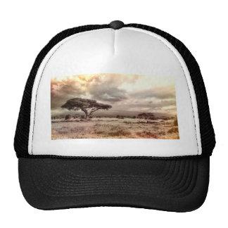 africa-944-land-wild-nature trucker hat