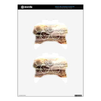 africa-944-land-wild-nature xbox 360 controller skins