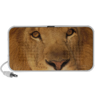 Africa. African male lion, or panthera leo. Mp3 Speaker
