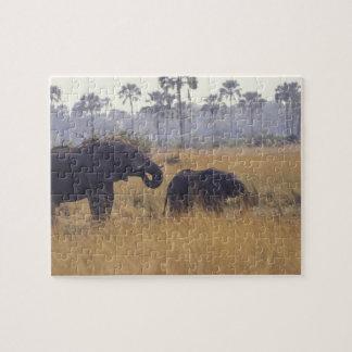 AFRICA, Botswana, African Elephant Jigsaw Puzzles