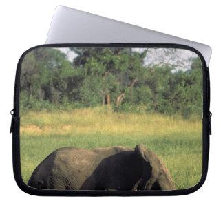 Africa, Botswana, Chobe National Park. Elephant Laptop Sleeve