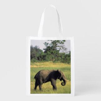 Africa, Botswana, Chobe National Park. Elephant Reusable Grocery Bag