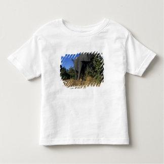 Africa, Botswana, Chobe National Park, Elephants Toddler T-shirt