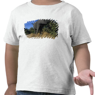Africa, Botswana, Chobe National Park, Elephants T-shirts
