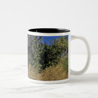 Africa, Botswana, Chobe National Park, Elephants Two-Tone Coffee Mug