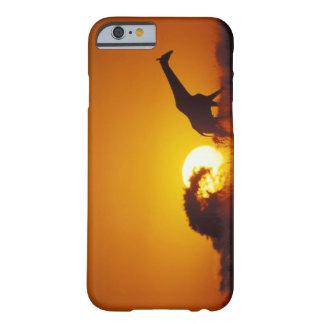 Africa, Botswana, Chobe National Park, Giraffe 2 iPhone 6 Case