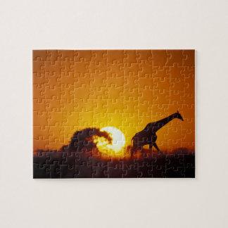 Africa, Botswana, Chobe National Park, Giraffe 2 Jigsaw Puzzle