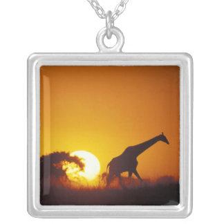 Africa, Botswana, Chobe National Park, Giraffe 2 Silver Plated Necklace