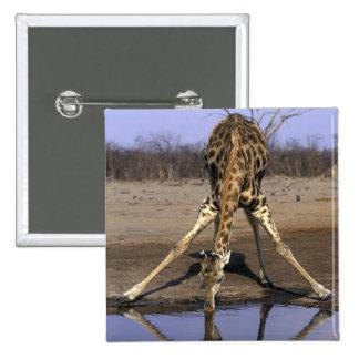 Africa Botswana Chobe National Park Giraffe Pinback Button