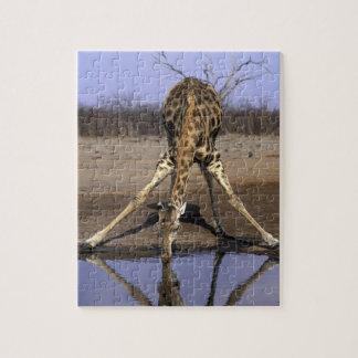 Africa, Botswana, Chobe National Park, Giraffe Jigsaw Puzzle