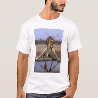 Africa, Botswana, Chobe National Park, Giraffe T-Shirt