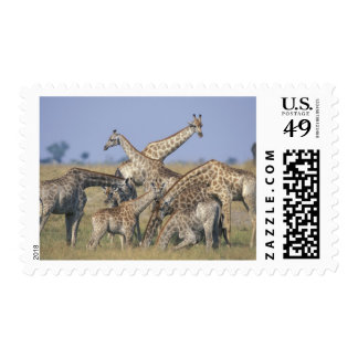 Africa, Botswana, Chobe National Park, Herd of 2 Postage Stamps