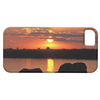 Africa, Botswana, Chobe National Park, Herd of iPhone 5 Cases