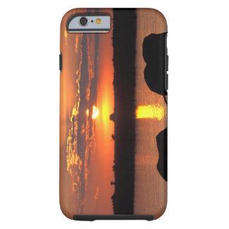 Africa, Botswana, Chobe National Park, Herd of iPhone 6 Case