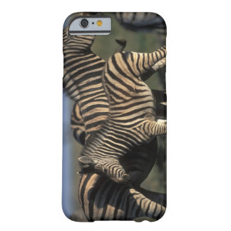 Africa, Botswana, Chobe National Park, Plains Barely There iPhone 6 Case