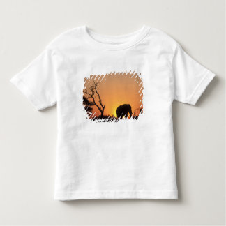 Africa, Botswana, Chobe National Park, Setting Toddler T-shirt