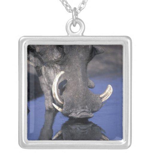 Africa, Botswana, Chobe National Park, Warthog Custom Necklace