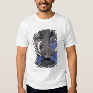 Africa, Botswana, Chobe National Park, Warthog T-Shirt