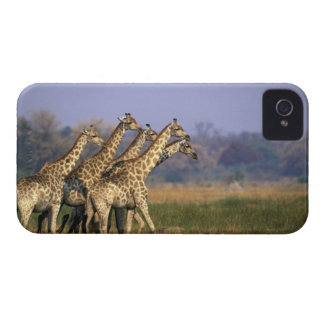Africa, Botswana, Moremi Game Reserve, Herd of iPhone 4 Case