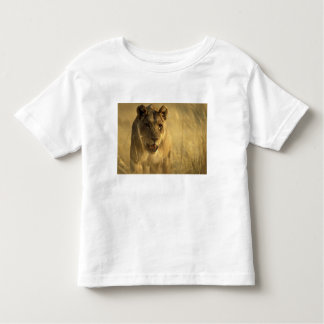 Africa, Botswana, Moremi Game Reserve, Lioness Toddler T-shirt