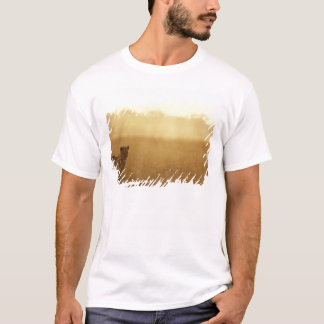 Africa, Botswana, Moremi Game Reserve, Male Lion T-Shirt