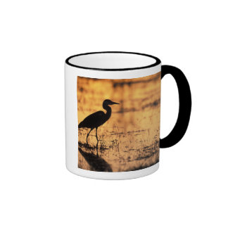 Africa, Botswana, Moremi Game Reserve, Mug