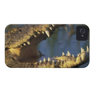Africa, Botswana, Moremi Game Reserve, Nile iPhone 4 Case