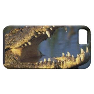 Africa, Botswana, Moremi Game Reserve, Nile iPhone SE/5/5s Case