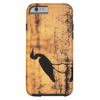 Africa, Botswana, Moremi Game Reserve, Tough iPhone 6 Case