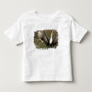 Africa. Botswana, Moremi Game Reserve, Wattled Toddler T-shirt