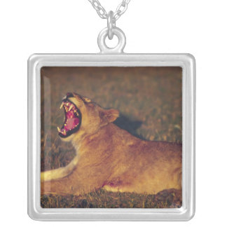 Africa,Botswana,Moremi Wildlife Reserve. Lioness Square Pendant Necklace