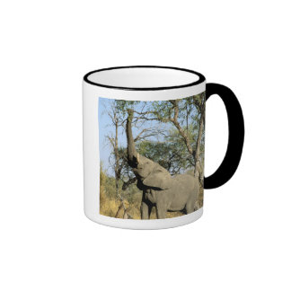 Africa, Botswana, Okavango Delta. African 2 Ringer Coffee Mug