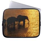 Africa, Botswana, Okavango Delta. African Laptop Sleeve