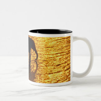 Africa, Botswana, Okavango Delta. African Two-Tone Coffee Mug