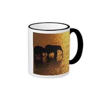 Africa, Botswana, Okavango Delta. African Ringer Coffee Mug