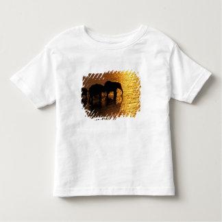 Africa, Botswana, Okavango Delta. African Toddler T-shirt