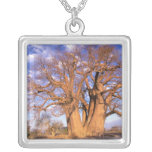 Africa, Botswana, Okavango Delta. Baobab Personalized Necklace