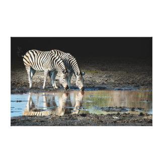 Africa,Botswana, Okavango Delta, Davison Camp Canvas Print